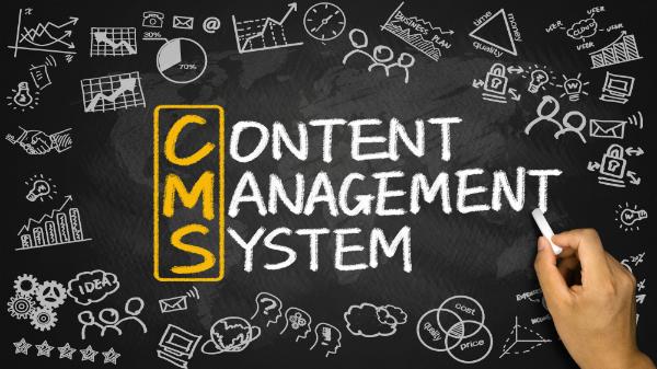 CMS - Web Designing India